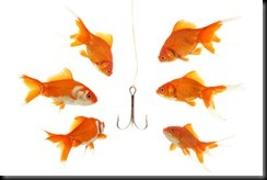 link_bait_goldfish