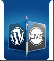 CMS-Icon